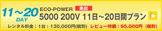 ECOPOWER-5000 30日間